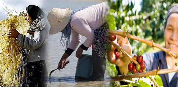 femmes-rurales