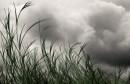 Météo : ciel voilé mais peu de précipitations en vue