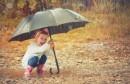 Le temps sera parfois nuageux avec pluies temporairement orageuses