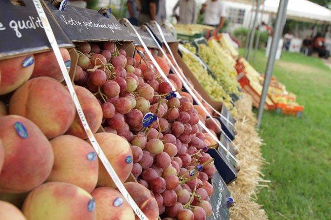 tunisie-fruits-siamap