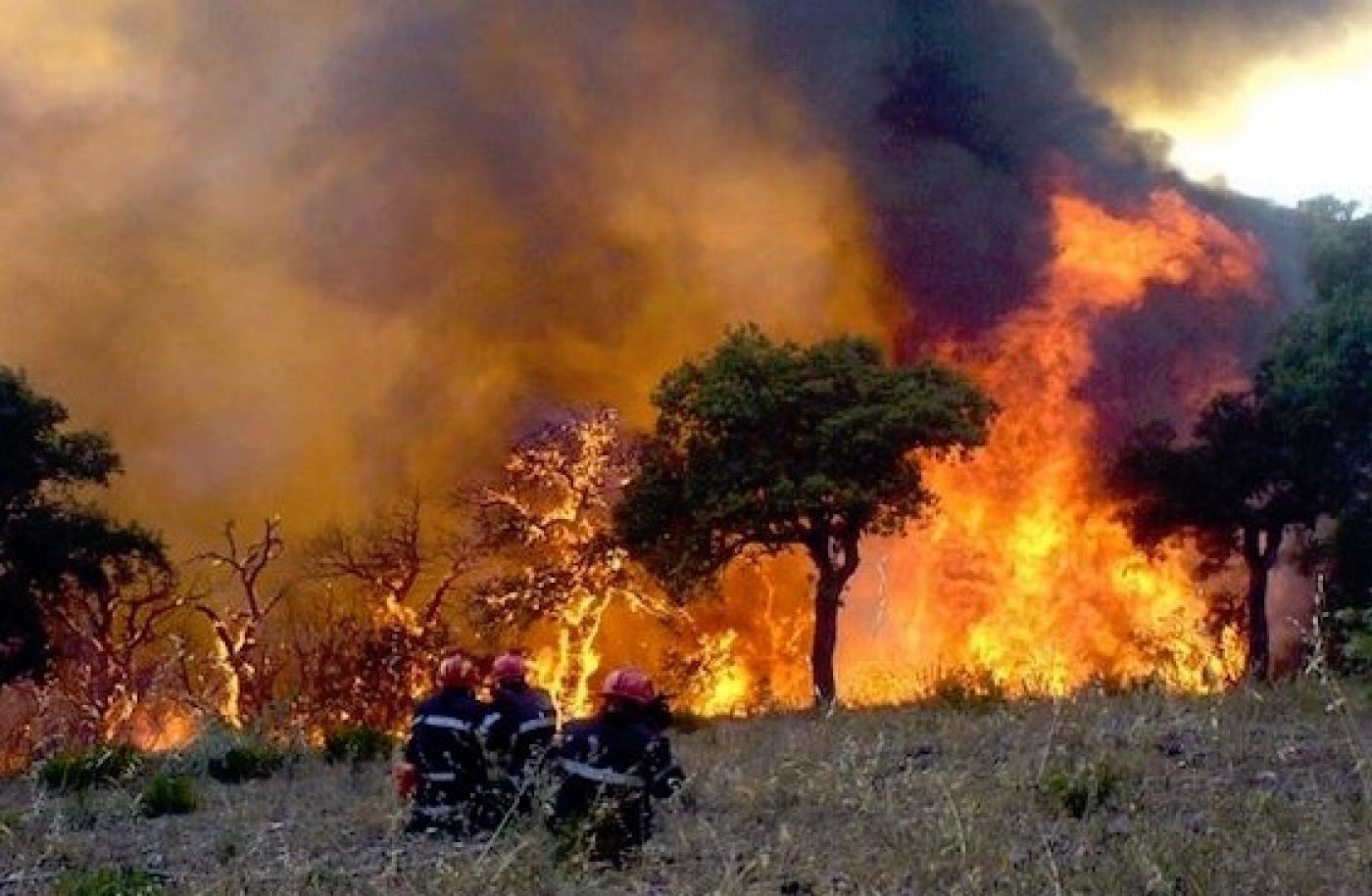 incendie algerie